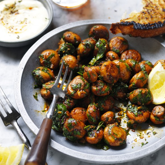 Mushroom-recipes-featured